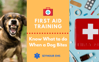First Aid Training: How To Treat Dog Bites